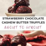 Strawberry Chocolate Cashew Butter Truffles (Vegan + Gluten Free)