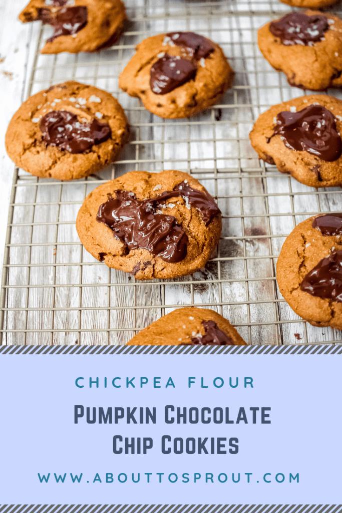 Chickpea Flour Pumpkin Chocolate Chip Cookies