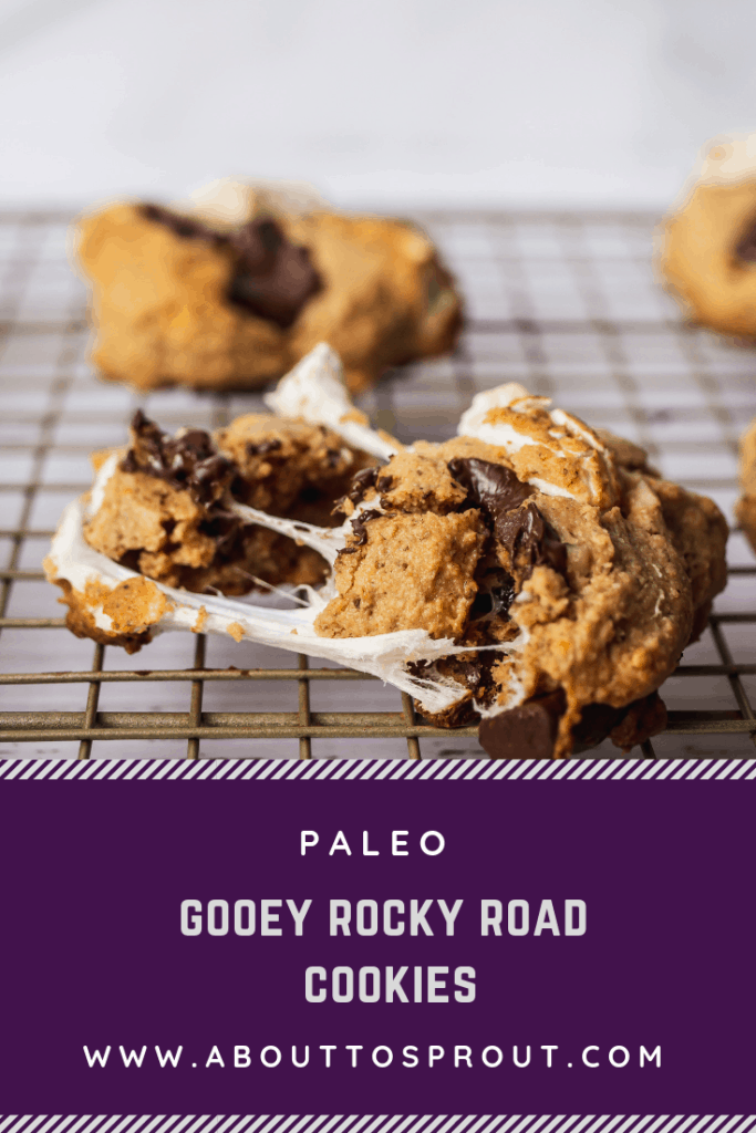 Gooey Rocky Road Cookies (Paleo) PIN