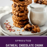 Sprouted Oatmeal Chocolate Chunk Hemp Seed Cookies
