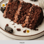 Blackberry Chocolate Cake - Paleo