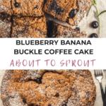 Blueberry Banana Buckle Coffee Cake